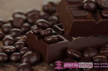 Chocolate Processing Equipment